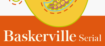 Baskerville Serial-Regular